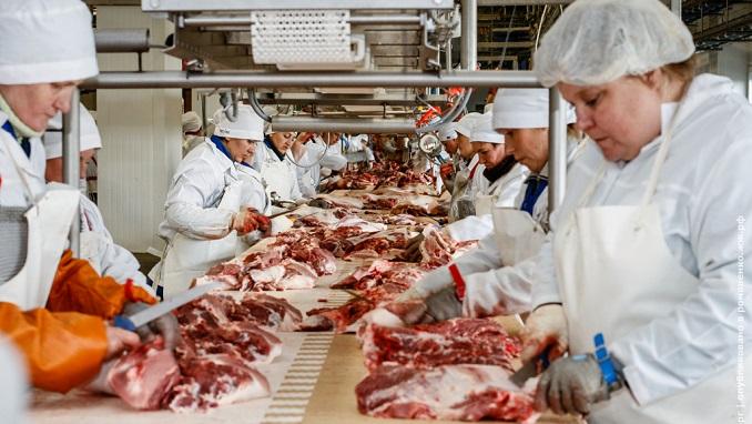 Damate Starts Building Major Kosher Meat Plant for Israel Exports